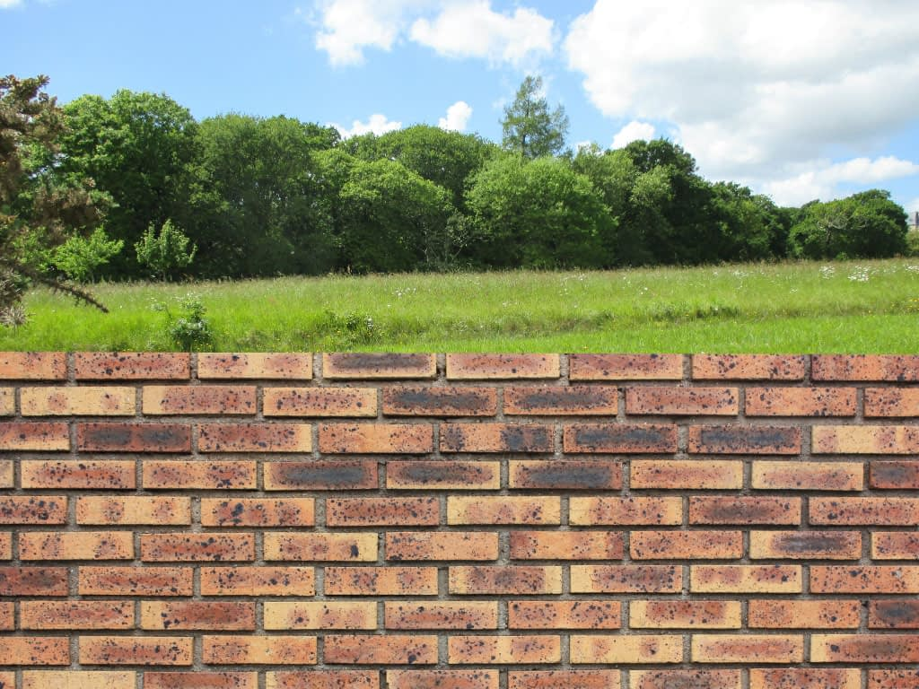Green field on other side of a brick wall.