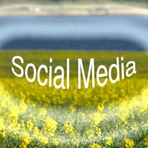 SocialLandscape-flowers