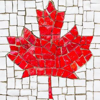 Media consumption in Canada small