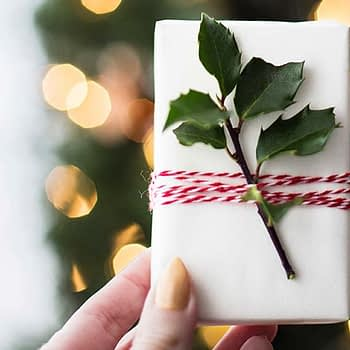 Image of wrapped Christmas present with holly on it