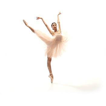 Case Study Alberta Ballet
